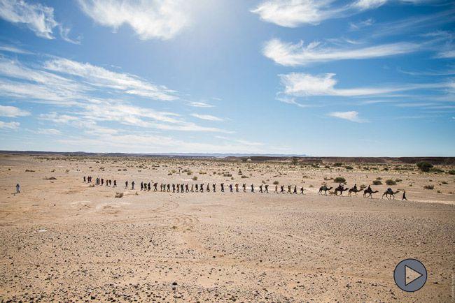 ici-dan-le-desert-multimedia